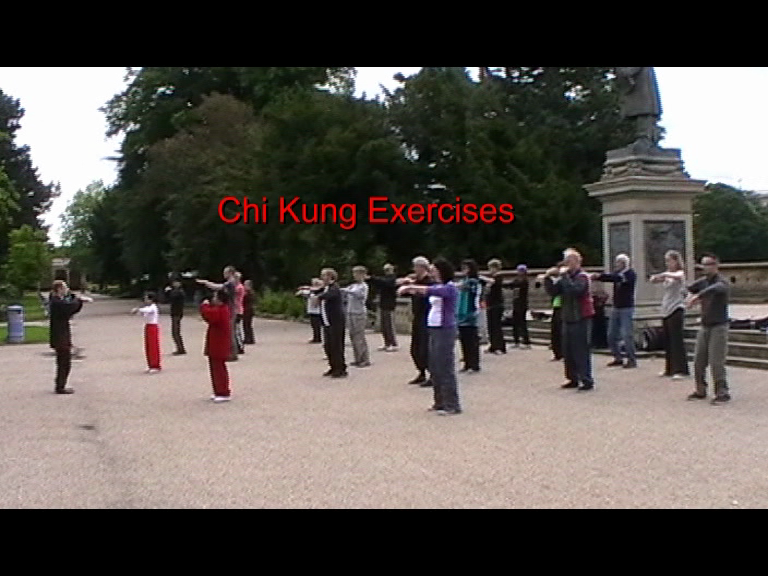 tai chi in the park - qigong