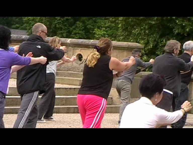 tai chi in the park - the form