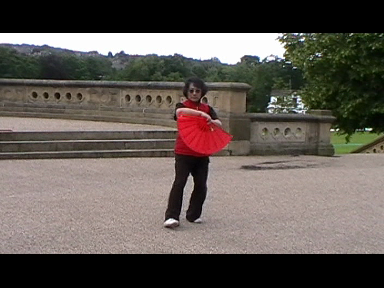 tai chi in the park - the fan form